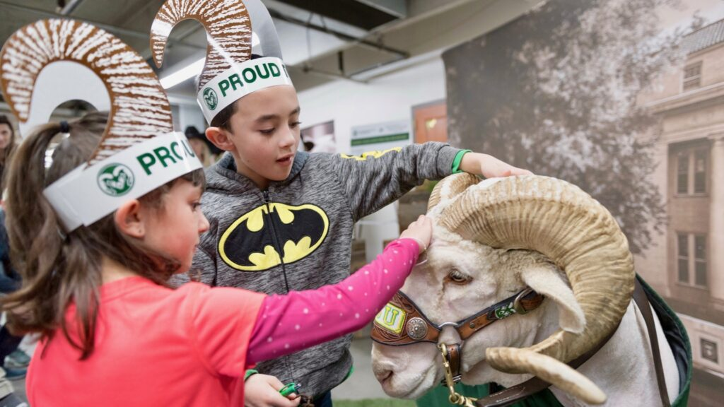 Kids petting a ram at the National Western Stock Show