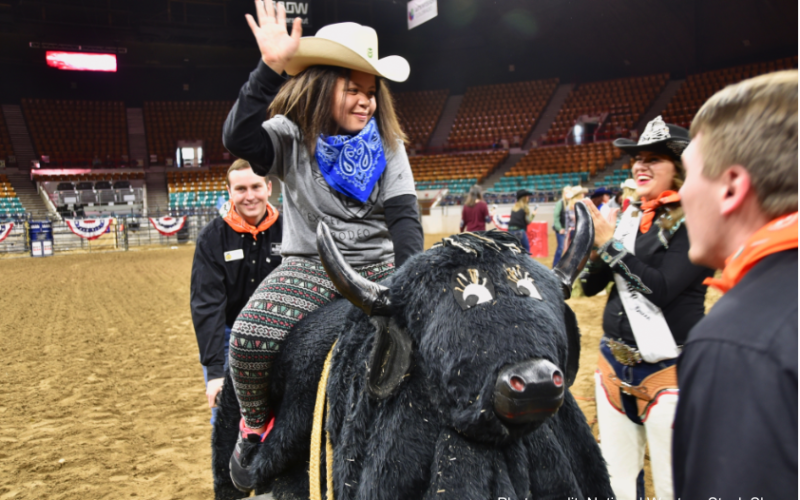 A young girl rides a stuffed bull