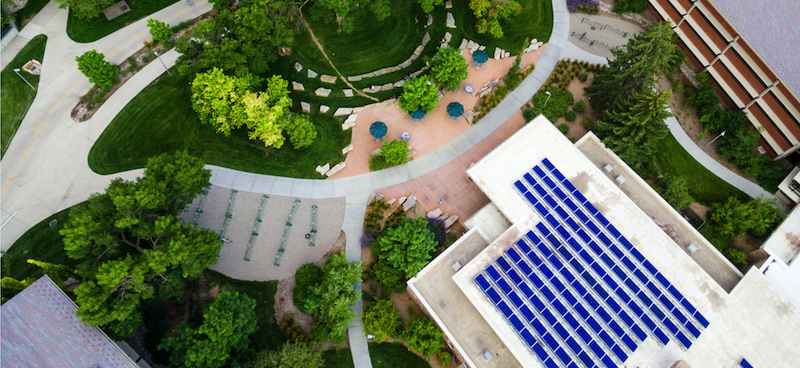 Aerial view of solar panels.