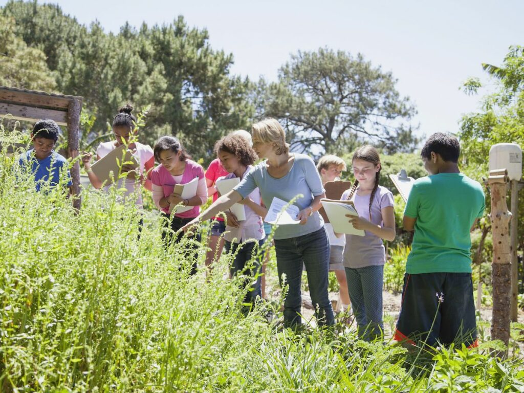 A group of children look at plants.